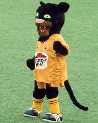 Pilgrim the Panther